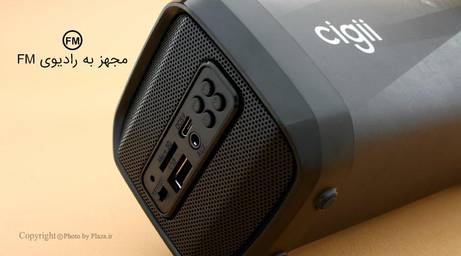 اسپیکر Cigii F41B